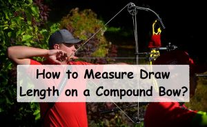How to Measure Draw Length on a Compound Bow
